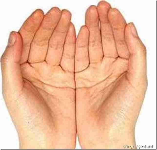 число перевод пальцы метод двоичная систем  serv