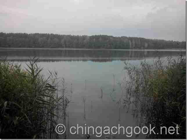 фидер. рак рыбалка озеро лебеди  rybalka
