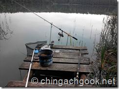 Мой первый опыт фидерной ловли на озере